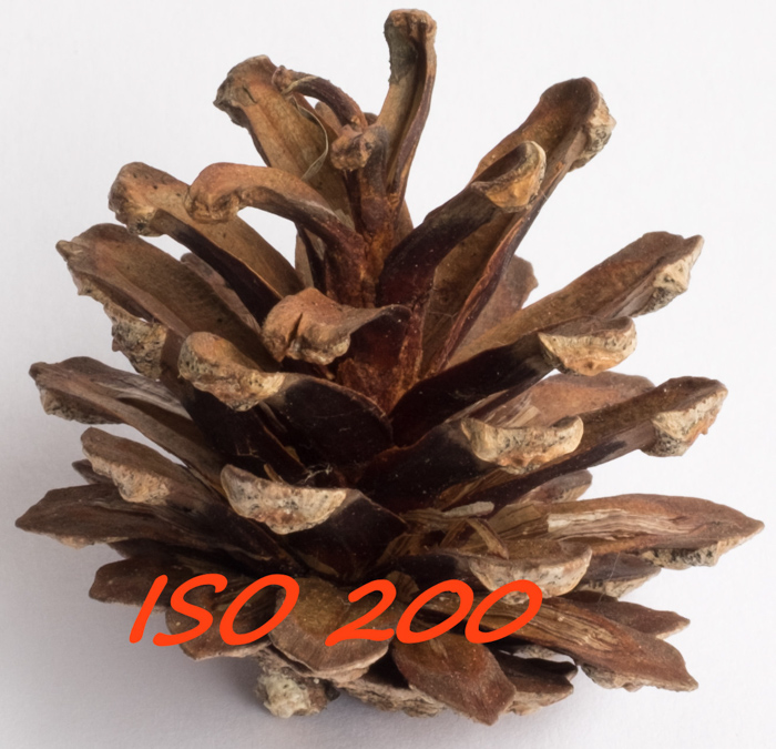 ISO 200